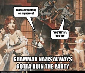 Grammar Nazis: No Fun At All