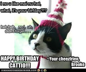Happy Birthday Cattio!