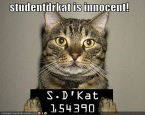 studentdrkat is innocent!