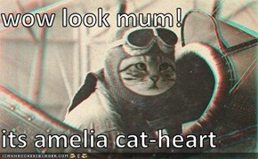 wow look mum!  its amelia cat-heart