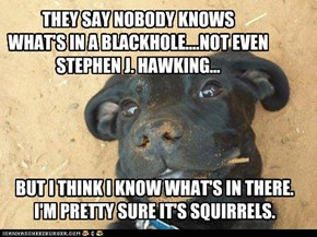 THEY SAY NOBODY KNOWS WHAT'S IN A BLACKHOLE....NOT EVEN  STEPHEN J. HAWKING...