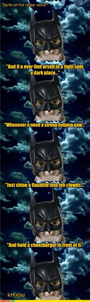 BATCAT - I are Dark Knight! [will work for cheezburgers]