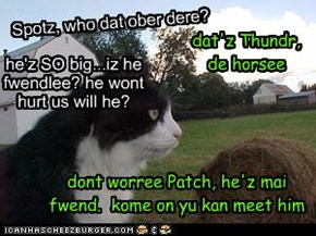 Spotz Shows Patch Around Hiz Neu Home