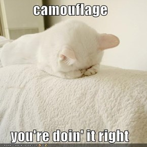 camouflage  you're doin' it right
