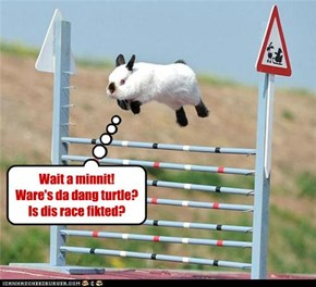 Hao teh race reely went down!