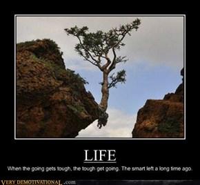 LIFE, Man
