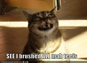 SEE I brushed ALL mah teefs