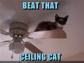 BEAT THAT  CEILING CAT