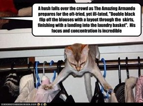 """A hush falls over the crowd as The Amazing Armando prepares for the oft-tried, yet ill-fated, """"Double black flip off the blouses with a layout through the  skirts, finishing with a landing into the laundry basket"""".  His focus and concentration is incredib"""