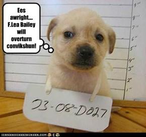 Ees awright.... F.Lea Bailey will overturn  convikshun!