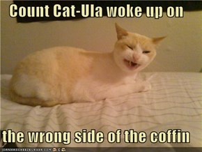 Count Cat-Ula woke up on  the wrong side of the coffin