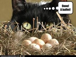 Oooo! A buffet!