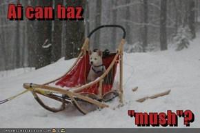 "Ai can haz  ""mush""?"