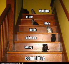 Meeting in progress