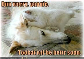 Dun worry, goggie.                  Tookat wil be bettr soon.