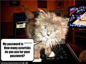 My password is ********* How many asterisks do you use for your password?
