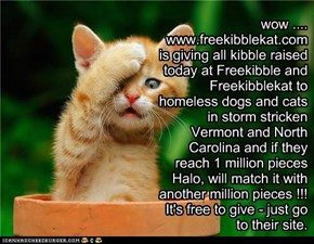 wow ....  www.freekibblekat.com is giving all kibble raised today at Freekibble and Freekibblekat to homeless dogs and cats in storm stricken Vermont and North Carolina and if they reach 1 million pieces Halo, will match it with another million pieces !!!