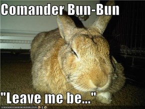 "Comander Bun-Bun  ""Leave me be..."""
