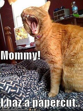 Mommy! I haz a papercut..