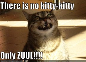 There is no kitty-kitty  Only ZUUL!!!!
