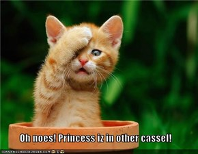 Oh noes! Princess iz in other cassel!