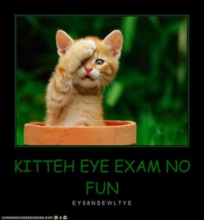 KITTEH EYE EXAM NO FUN