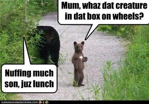 Mum, whaz dat creature in dat box on wheels?