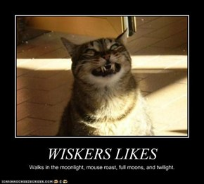 WISKERS LIKES