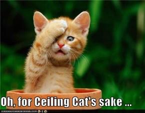 Oh, for Ceiling Cat's sake ...