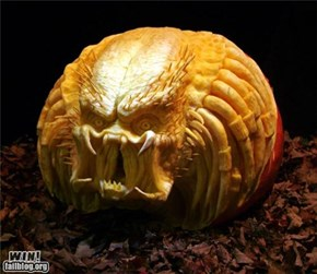 Predator Pumpkin WIN