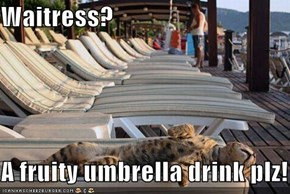 Waitress?  A fruity umbrella drink plz!