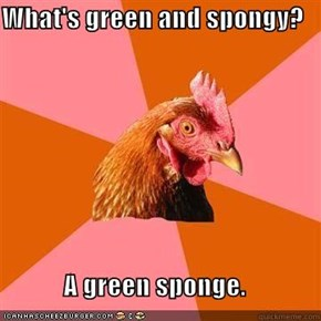 What's green and spongy?  A green sponge.