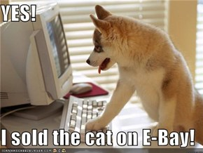 YES!  I sold the cat on E-Bay!