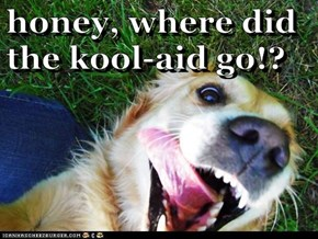 honey, where did the kool-aid go!?