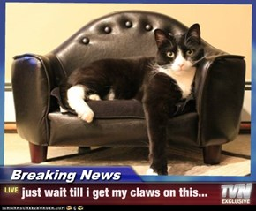 Breaking News - just wait till i get my claws on this...