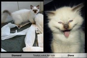 Diamond Totally Looks Like Diana