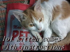 lol kitteh comes with instructions