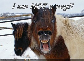 i am NOT a nag!!