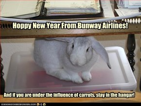 Hoppy New Year From Bunway Airlines!