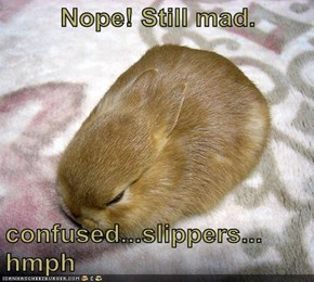 Nope! Still mad.  confused...slippers...  hmph