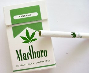 Legalize It of the Day
