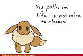 Eevee Problems
