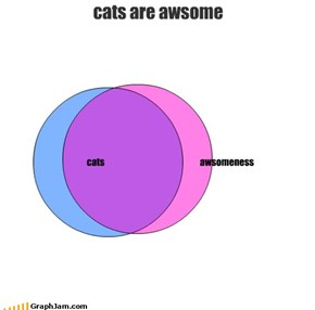 cats are awsome