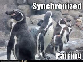 Synchronized  Pairing