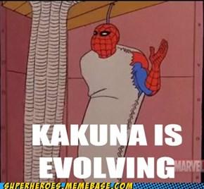 Into Spider-Kuna
