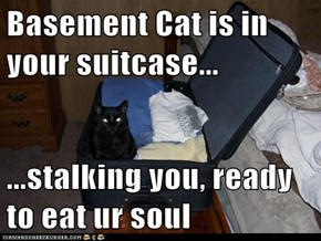 Basement Cat is in your suitcase...  ...stalking you, ready to eat ur soul