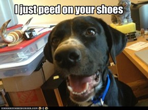 I just peed on your shoes