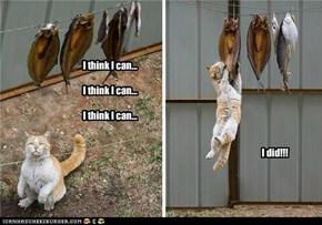 I think I can...I think I can...I think I can...