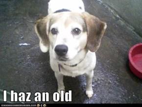I haz an old