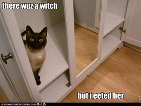 there wuz a witch  but i eeted her